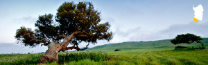 natura sardegna sulcis iglesiente sud ovest portoscuso bed and breakfast sa cruxitta